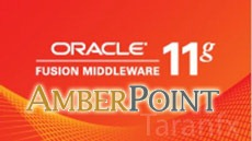 oracle-middleware-amberpoint